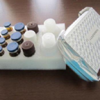 人环磷酸鸟苷(cGMP)ELISA试剂盒  规格