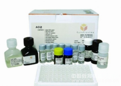人肌球蛋白(Myosin)ELISA试剂盒