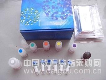 大鼠HO-1试剂盒(血红素氧合酶1)ELISA试剂盒提供专业售后