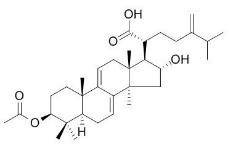 去氢茯苓酸,77012-31-8,Dehydropachymic acid,中药标准品,对照品