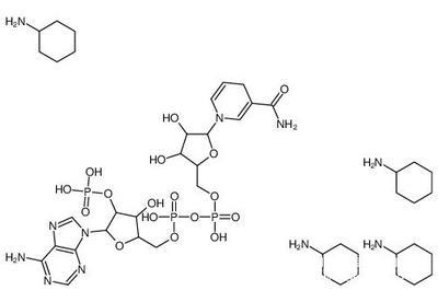 NADPH四环已胺 CAS:100929-71-3