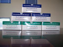 大鼠血管紧张素I(Ang I)ELISA试剂盒