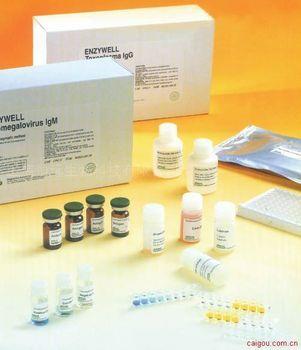 人乳头状瘤病毒抗体IgM ELISA试剂盒