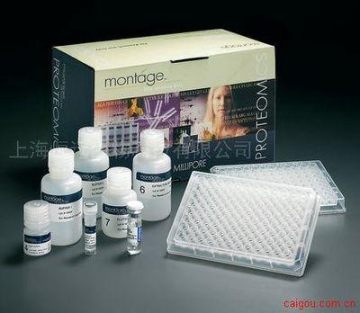 大鼠磷酸肌醇3激酶ELISA试剂盒