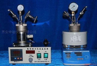 西安实验型反应釜 微型高压反应釜 催化反应釜
