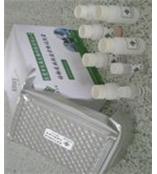小鼠免疫球蛋白E试剂盒/小鼠IgE ELISA试剂盒