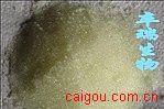 聚酰胺/尼龙/聚酰胺树脂/Polyamide