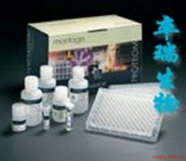人巨噬细胞炎性蛋白3α(MIP-3α/CCL20)Elisa试剂盒