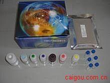 人Elisa-γ干扰素试剂盒,(IFN-γ)试剂盒
