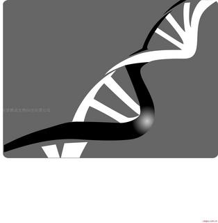 碧波Annexin V-FITC细胞凋亡检测试剂盒