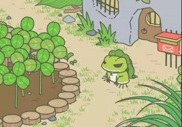 你家蛙旅行还没回家?真相在这里