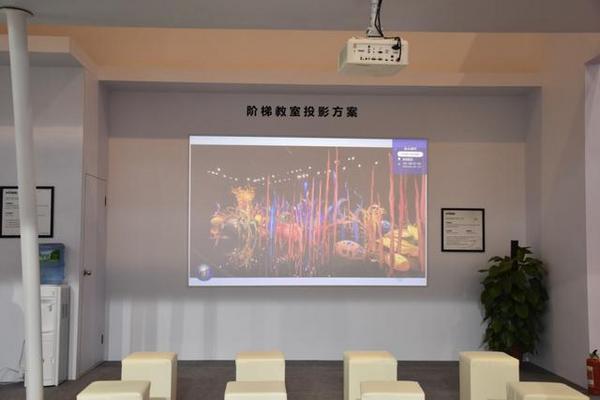 Vivitek(麗訊)精彩亮相2019高等教育博覽會
