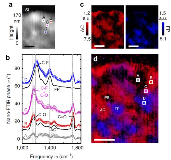nano-FTIR:攻克无损化学检测科研难题 实现高分子材料纳米级无损研究