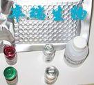 小鼠过敏毒素/补体片断4a(C4a)Elisa试剂盒