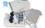 小鼠神经营养因子3试剂盒,NT-3取样要求
