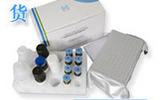 人血管生成素1试剂盒,ANG-1取样要求