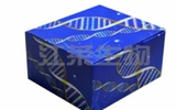 大鼠骨橋素(OPN)ELISA試劑盒說明書