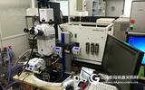 高温微观组织观察系统