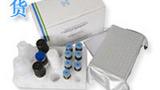 大鼠氧化低密度脂蛋白抗体试剂盒,OLAb取样要求