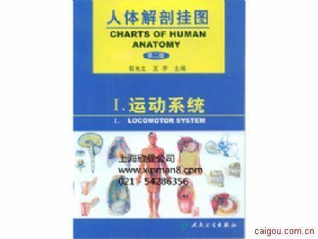 人體解剖學掛圖