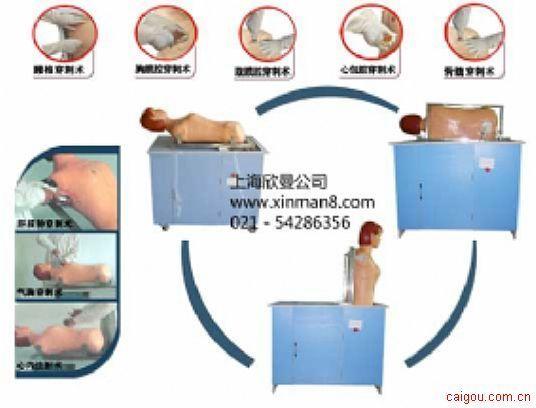 綜合穿刺術模擬人