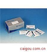大鼠17-OHP,17羟孕酮Elisa试剂盒
