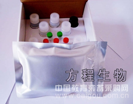 人Human血管紧张素Ⅱ(ANG-Ⅱ)ELISA Kit检测价格说明书