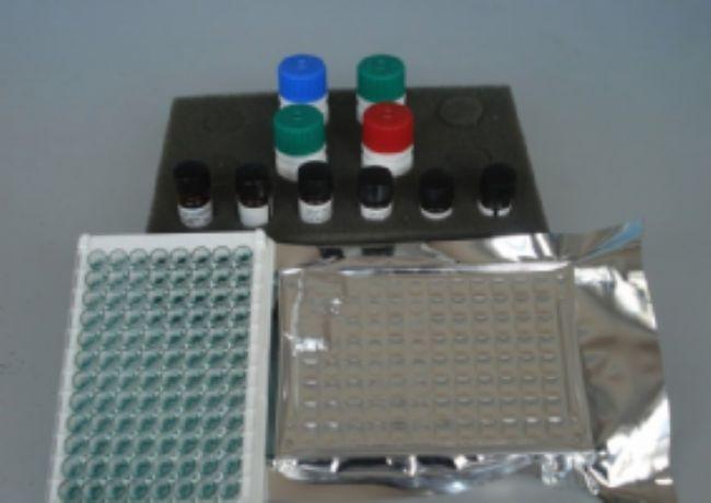 大鼠血栓调节蛋白(TM)ELISA试剂盒