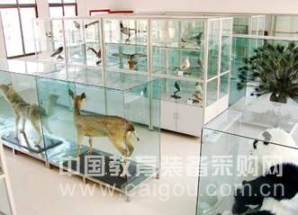 生物标本实验室