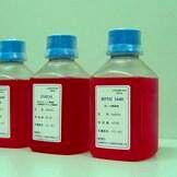 胰蛋白酶细胞消化液(无钙)