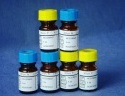 谷氨酰胺测试盒