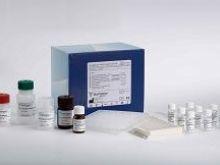 小鼠视黄醇结合蛋白(RBP)Elisa试剂盒
