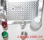 小鼠缺血修饰白蛋白(IMA)ELISA试剂盒