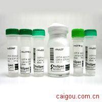 Glatiramer Acetate