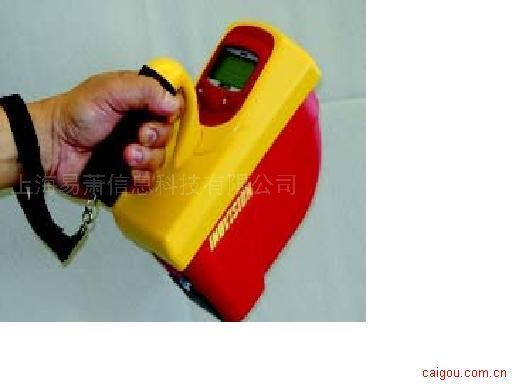451P 型加压电离室巡测仪